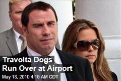 Travolta Dogs Run Over at Airport