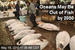 Oceans May Be Out of Fish by 2050