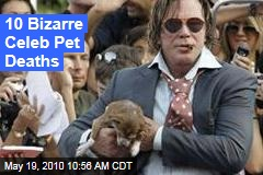 10 Bizarre Celeb Pet Deaths