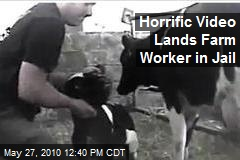 Horrific Video Lands Farm Worker in Jail