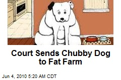 Court Sends Chubby Dog to Fat Farm