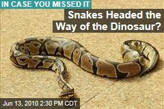 Snakes Headed the Way of the Dinosaur?