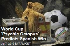 World Cup 'Psychic Octopus' Predicts Spanish Win