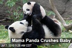 Mama Panda Crushes Baby