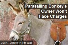 Parasailing Donkey's Owner Won't Face Charges