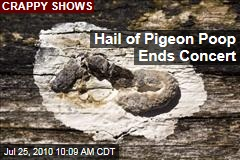 Hail of Pigeon Poop Ends Kings of Leon Show