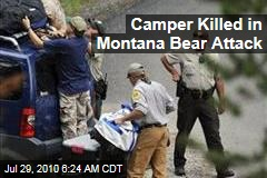 Camper Killed in Montana Bear Attack