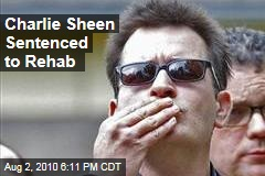 Charlie Sheen Sentenced to Rehab