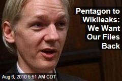 Pentagon to Wikileaks: We Want Our Files Back