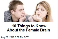 10 Things to Know About the Female Brain
