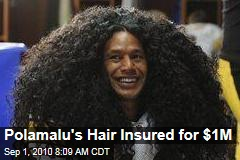Polamalu's Hair Insured for $1M